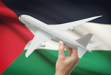 palestine: Airplane in hand with national flag on background - Palestine
