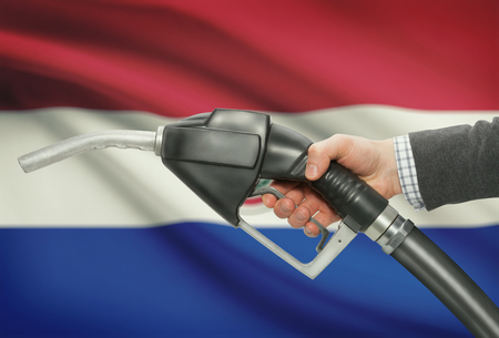 petrochemistry: Fuel pump nozzle in hand with flag on background - Paraguay Stock Photo