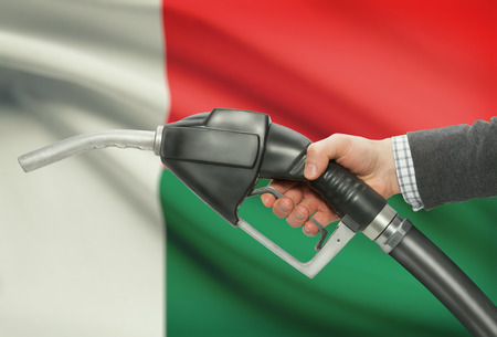 Fuel pump nozzle in hand with flag on background - Madagascar