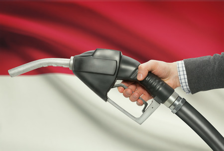 petrochemistry: Fuel pump nozzle in hand with flag on background - Indonesia