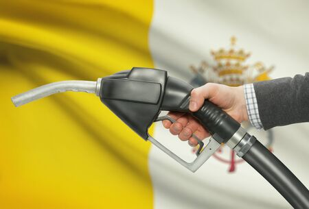 methanol: Fuel pump nozzle in hand with flag on background - Vatican City State