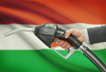 petrochemistry: Fuel pump nozzle in hand with flag on background - Niger
