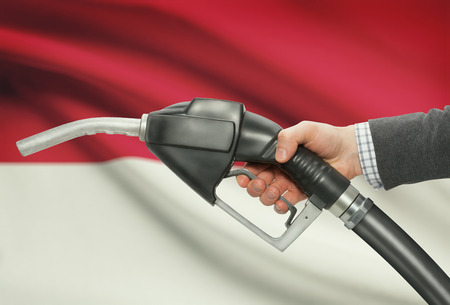 petrochemistry: Fuel pump nozzle in hand with flag on background - Monaco