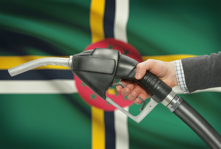 methanol: Fuel pump nozzle in hand with flag on background - Dominica Stock Photo