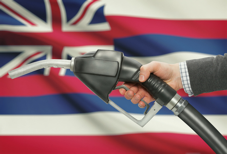 methanol: Fuel pump nozzle in hand with US states flags on background - Hawaii