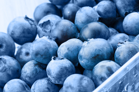 close up food: Bunch of organic blueberries in food container - close up shot