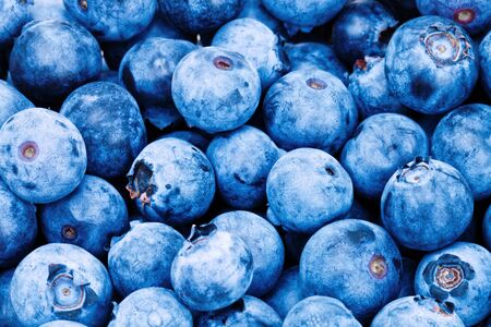 Bunch of freshly picked blueberries - studio shot. Filtered image: cross processed vintage effect.