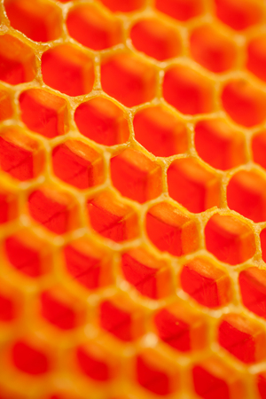 Close up studio shot of authentic organic honey in honeycomb picked just a moment ago - healthy eating