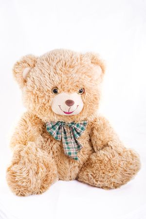 teddy bear photo