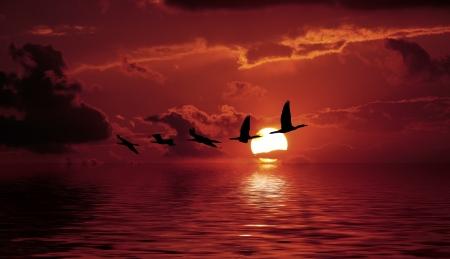 the sea the sky,turkey photo