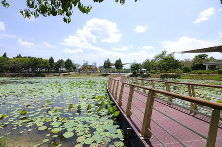 manmade: Floating Bridge at Cyberjaya Lake, Selangor, Malaysia. This bridge connects to the small manmade island at the centre of the lake. The lake used as recreation centre for Cyberjaya residents. Stock Photo