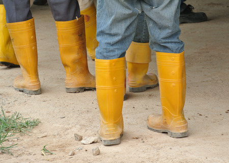 fine legs: SELANGOR, MALAYSIA  FEBRUARY13, 2015: Construction workers in boots at the construction site.