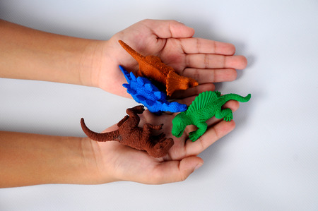Children hand holding Triceratops, Stegosaurus, Spinosaurus and Tyrannosaurus dinosaur model. The model was made from rubber isolated on white background.