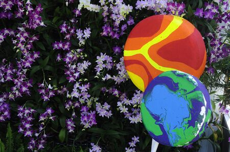 Two multi-colored lollipop models are made of polystyrene, with a background of orchid flowers. Stock Photo