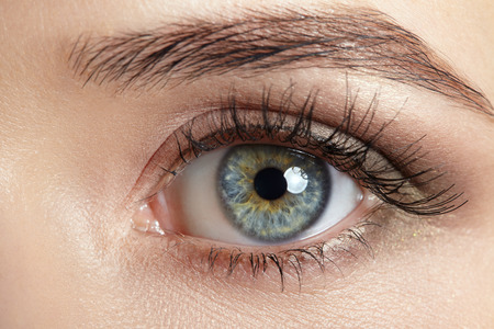 Macro image of human eye.