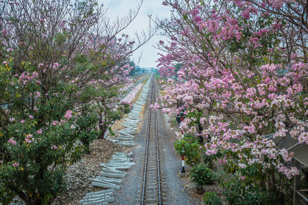 of moment: Railroad in pink moment.