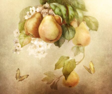 art processing: Still life of, pears and flowers on a vintage background