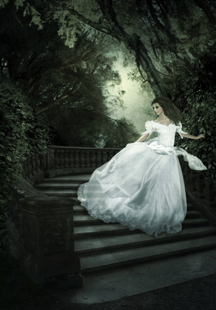 The fairy tale Charles Perraults Cinderella  Girl, night, stairs photo