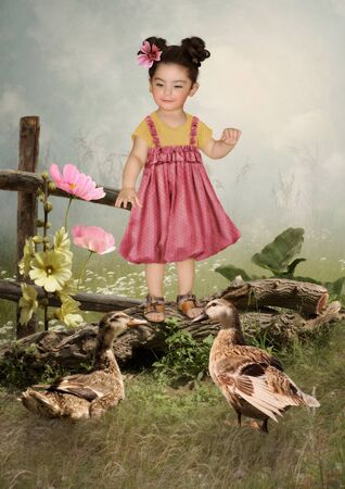 cognicion: La ni�a con una sonrisa mira a los patos
