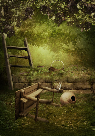 lovelorn: The abandoned garden, empty jug of wine and kitten