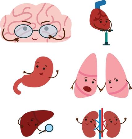 Cute smiling happy human organs set