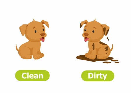 Vector antonyms and opposites. Cartoon characters illustration on white background. Card for children Clean and Dirty.