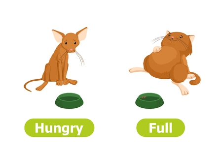 Vector antonyms and opposites. Cartoon characters illustration on white background. For a foreign language learning. Hungry and Full.