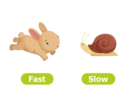 Vector antonyms and opposites. Cartoon characters illustration on white background. Card for teaching aid. Fast and slow