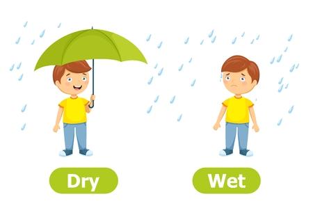 Vektor-Antonyme und Gegensätze.Trocken und nass. Zeichentrickfilm-Figur-Abbildung auf weißem Hintergrund. Karte für Lehrmittel. Vektorgrafik