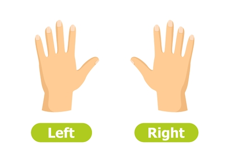 Vector antonyms and opposites. Left and Right. Illustrations on white background. Card for teaching aid. Vettoriali
