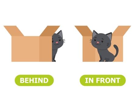 Ð¡at è in piedi davanti alla scatola e dietro la scatola. Illustrazione degli opposti davanti e dietro. Tessera per sussidio didattico, per l'apprendimento di una lingua straniera. Illustrazione vettoriale su sfondo bianco.
