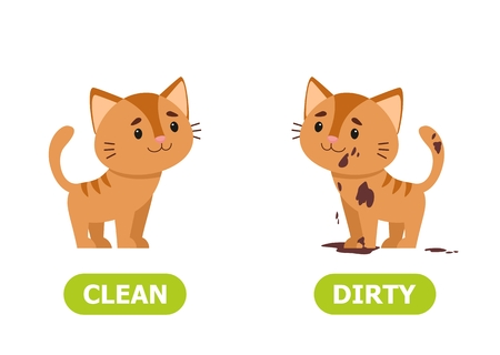 Kitty dirty and clean. Illustration of opposites for foreign language learning. Vector illustration on white background.