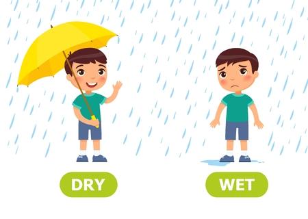 Il ragazzo sta sotto la pioggia con un ombrello e senza ombrello. Illustrazione degli opposti asciutti e bagnati. Tessera per sussidio didattico, per l'apprendimento di una lingua straniera. Illustrazione vettoriale su sfondo bianco, stile cartone animato. Vettoriali