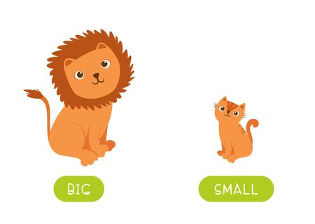 Foreign language studying word card vector template. Childish cards with antonyms, opposites. Big and small, wild and domestic cats. Adorable lion and kitten flat illustration with typography  イラスト・ベクター素材