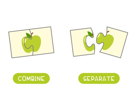 Educational word card with green apple vector template. English language learning flash card. Antonyms, opposites concept, combine and separate. Fresh fruit flat illustration with typography Ilustração