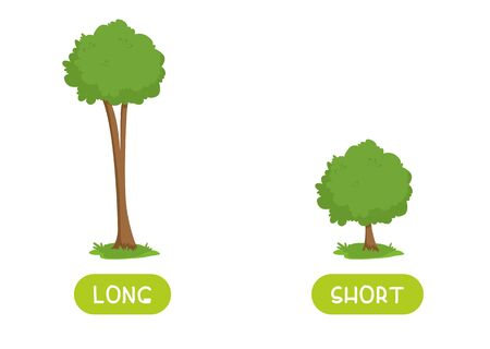 Short and long antonyms word card flat vector template. Flashcard for english language learning. Big and small opposites concept. Huge and tiny trees illustration with typography