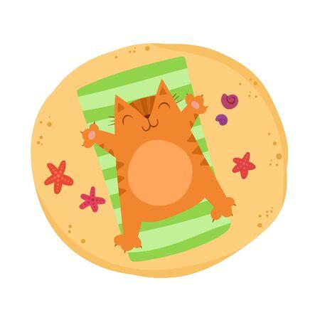 Chubby red cat sunbathes on the beach. Stok Fotoğraf