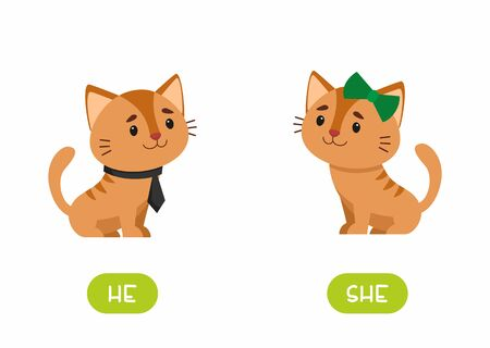 Cat girl and cat boy  illustration with typography. She and he antonyms flashcard vector template. Word card for english language learning with flat characters. Opposites concept.
