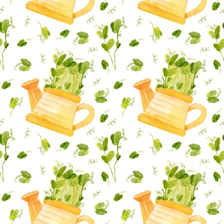 Cute yellow watering can with seedlings of pea. Bright spring crops. Fresh microgreens, cress salad. Garden season. Hand drawn watercolor seamless pattern. Wallpaper, wrapping paper design, textile, scrapbooking, digital paper. Reklamní fotografie