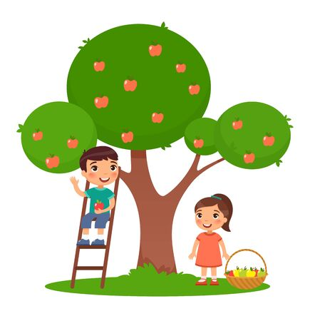 Children picking apples color flat vector illustration. Little boy and girl harvesting fruits together. Brother on ladder and sister near apple tree in garden. Isolated cartoon characters on white Ilustrace