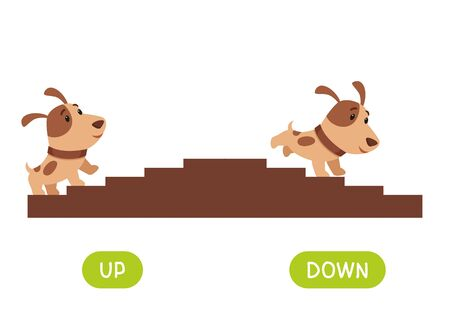 Opposites concept, UP and DOWN. Word card for language learning. Cute puppy rises up the stairs, runs down.  Flashcard with antonyms for children vector template. Flat illustration with typography.