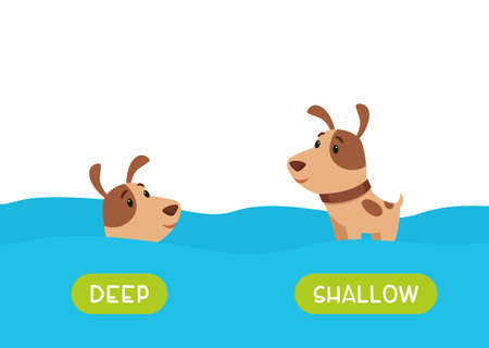 Little dog swimming cartoon illustration. Educational english flash card with antonyms flat vector template. Childish memo cards for language learning concept. Opposites, deep and shallow words.