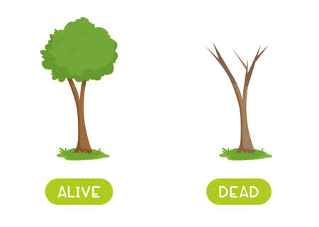 Alive and dead antonyms word card vector template.