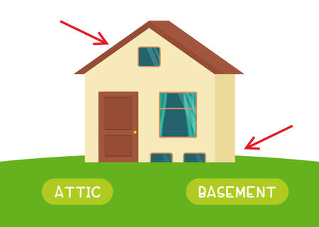 Attic and basement antonyms word card vector template. Flashcard for english language learning. Opposites concept. House and arrows point up and down.