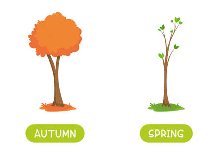 Autumn and spring antonyms word card vector template. Flashcard for english language learning. Opposites concept. A tree with an orange crown and a spring tree with the first leaves.