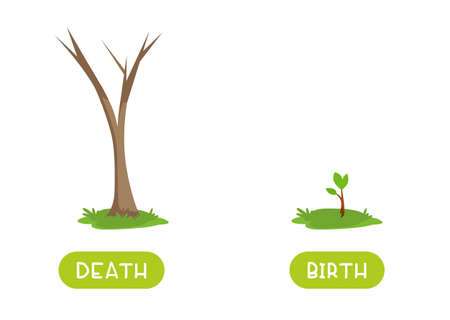 Death and birth antonyms word card vector template. Flashcard for english language learning. Old and withered tree trunk and tree sprout.