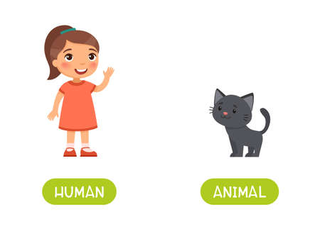 Human and animal antonyms word card vector template. Opposites concept. Flashcard for english language learning. Little girl and cute kitten.