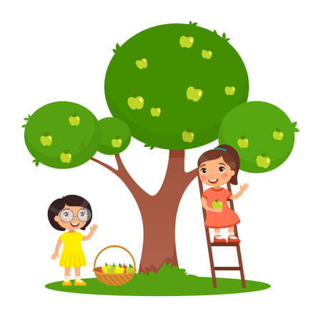Children picking apples color flat vector illustration. Two little girls harvesting fruits together. One girl on ladder and one girl near apple tree in garden. Isolated cartoon characters on white