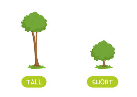 TALL and SHORT antonyms word card vector template. Flashcard for english language learning. Opposites concept. Big tree and a small bush.