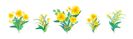 Yellow floral compositions. Blooming spring flowers, green leaves and hearts for greeting, invitation card design elements pack.